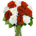 1 Dozen Red and White Roses in vase