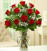 12 Red Rose Bouquet in Vase