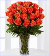 24 Long-stemmed Orange colored roses