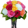 12 Perfecrt Mixture of colored roses in vase