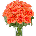 12 Dark Orange Roses in a vase