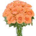 12 Bright Orange Roses in vase