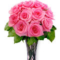 Dozen Pure Pink Roses with Fillers in vase