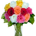 12 Beautiful Multicolored Roses in vase