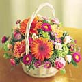 Nice flowers in a basket