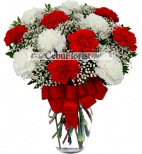 Christmas Red and White Carnations Flower Vase