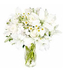 White Elegance in Vase