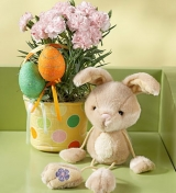 Carnation with Bunny