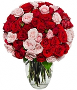 100 Blooms of Pink and Red Roses