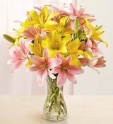 Pink and Yellow Lily Vase