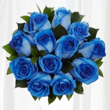 One Dozen Blue Roses in Bouquet