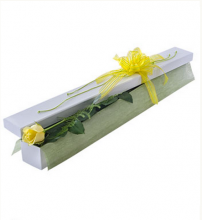 Single Yellow Rose in Box