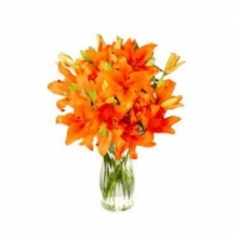 One Dozen Orange Lilies in a Vase