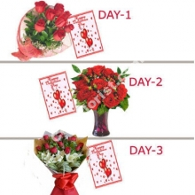 Love Combo Pack W/FREE Greeting Card