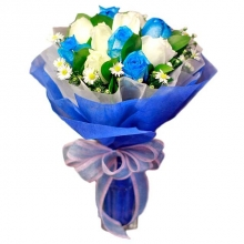 12 pcs Holland Blue & White Rose in Bouquet