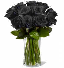 12 Beautiful Black Roses in Vase