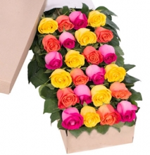 24 Mix Roses in Box