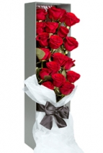 A Box of 12 Beautiful Red Roses