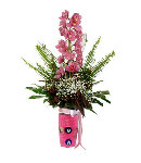 1 Stem Pink Orchids w/ Green Fillers in Vase