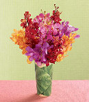 One Dozen Mixed Colors of Orchids in a Vase