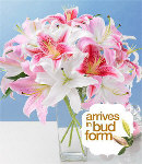 12pcs Mixed Pink & White Lilies in a Vase