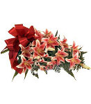 12 pcs wrapped red stargazer lilies