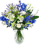 Long Stem Blue Flowers in Vase