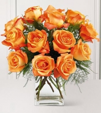 1 Dozen Orange  Roses in a Vase