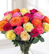 2 Dozen Multi Colored Roses in a Vase