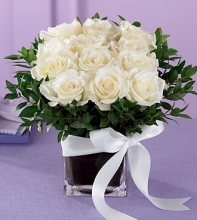 1 Dozen White  Roses in a Vase