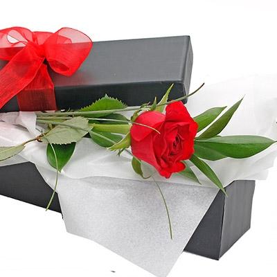 Buy Single Rose Box In Cebu Flower Delivery To Cebu Same Day Flower