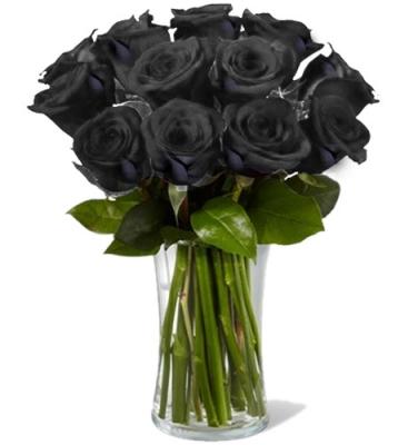 Black Rose Delivery To Cebu A Dozen Black Roses In Cebu
