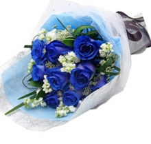 12 pcs. Imported Holland Blue Roses