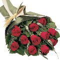 beautiful 12 red roses flowers