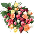 Mixed Coloured 24 Roses