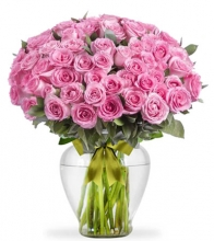 48 Pink Color Roses in Vase