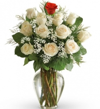 12 Mix Rose in Vase