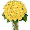24 Lovely Yellow Roses in vase