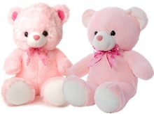 Couple Sweet Teddy Bear