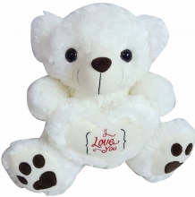 Teddy Bear with I love You on Heart