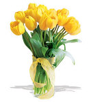 10 pcs. Valentines Yellow Holland Tulip