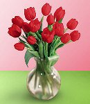 Valentines 12 Red Tulips in Vase