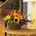 Mothers Day Mixed Flower basket