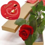 One Perfect Rose and chocolate