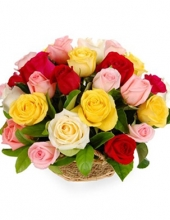 24 fresh mixed roses in basket