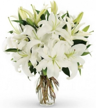 Christmas 4 Stem White Lilies in Vase