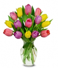 Colorful 12 Pieces Tulips