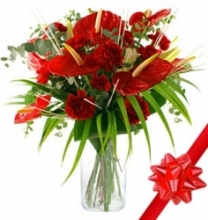 Christmas Bouquet of Anthurium & Carnations.