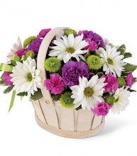A Basket flowers