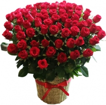 100 Red Roses in Box